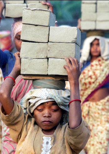 নববর্ষে 'বাংলা বসন্তে'র আশঙ্কা